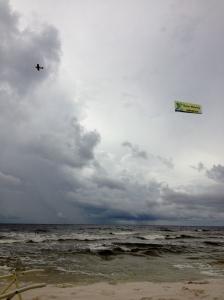 GEICO Banner Florida