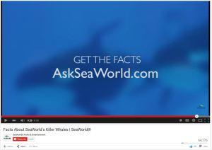 sea world 5